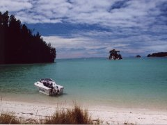 One of the many beaches, Abel Tasman NP